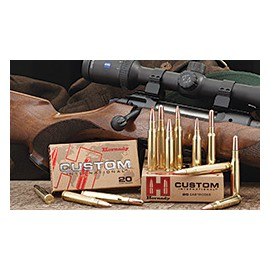 Hornady Custom International 9,3x62 286 gr.