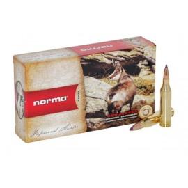 Balas Norma 243 win Ballistic tip - 90 grains
